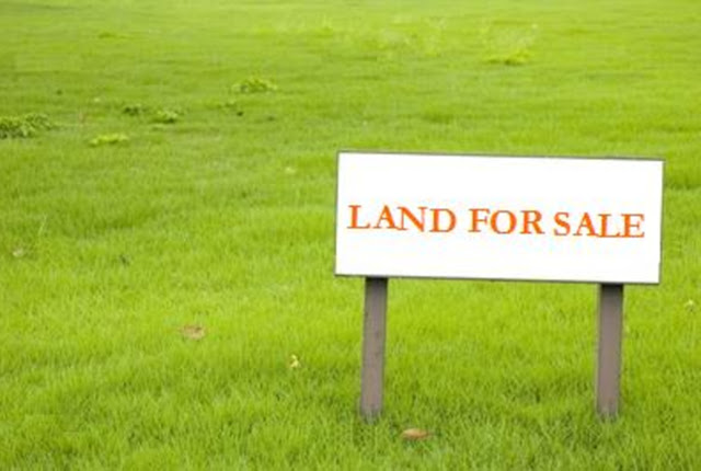 5 Cara Memilih Tanah Kavling Murah