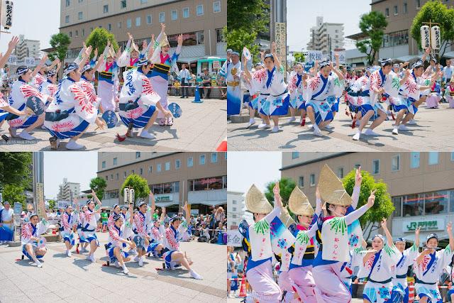 東京新のんき連、熊本地震被災地救援募金チャリティ阿波踊りの記事のカバー写真