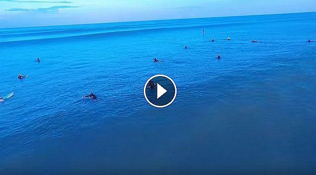 Surf Cullera Beach