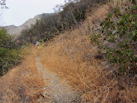 Beginning of Van Tassel Ridge Trail in Fish Canyon