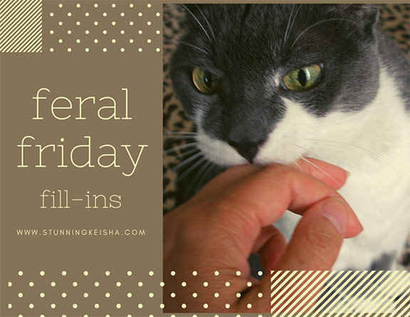 Feral Friday Fill-Ins