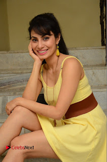 Actress Manisha Kelkar Latest Picture Gallery in Yellow Short Dress  0134