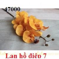 Phu kien hoa pha le tai Sai Dong