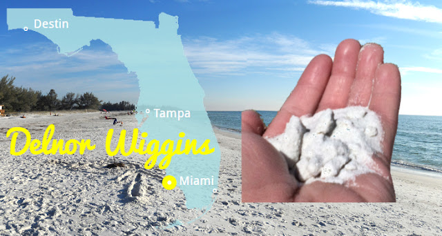 Delnor Wiggings State Park in Naturbelassene Strände Florida's, Florida USA