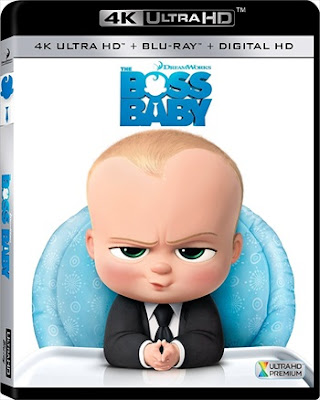 The Boss Baby 2017 Eng BRRip 480p 300mb ESub