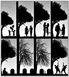 life cycle of zombie funny