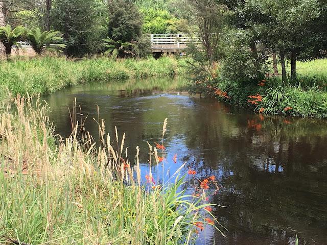 Latrobe River, Noojee