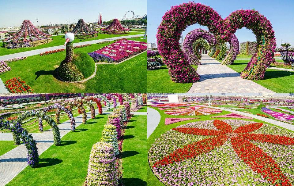 Bon Voyage Dubai Miracle Garden Dubai