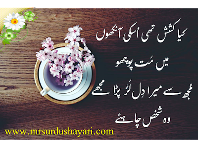 Urdu Shayari images best