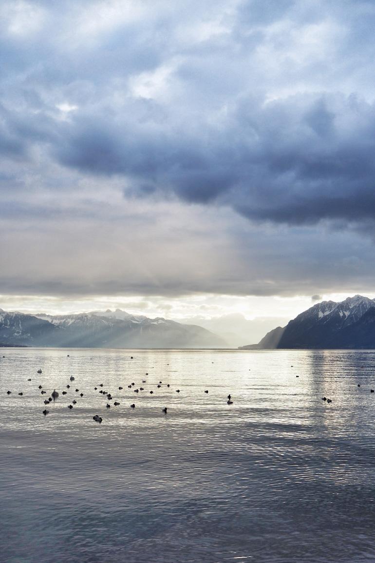 Coucher de soleil sur le lac Léman à Lausanne en Suisse