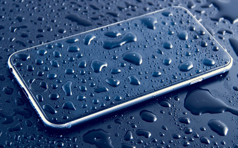Iphone 6s Plus Wallpapers 4k Vinny Oleo Vegetal Info