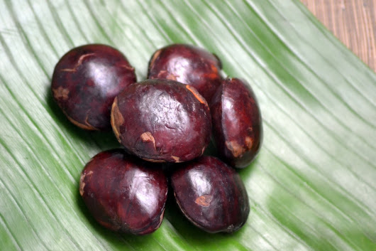 "Benefit of ""JENGKOL"" for our health"