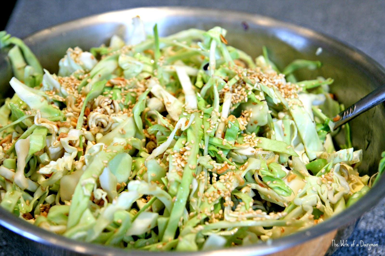 Asian Salad Cabbage 86