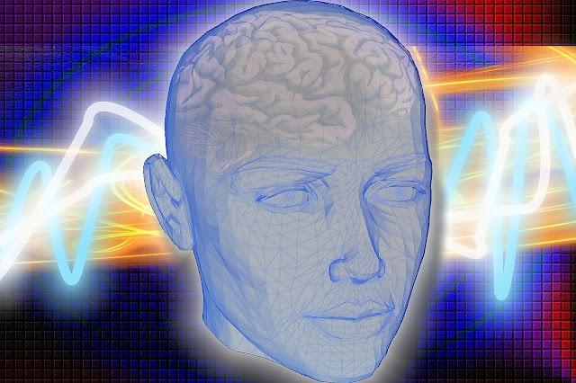(Culture) On peut regarder des documentaires sur le cerveau