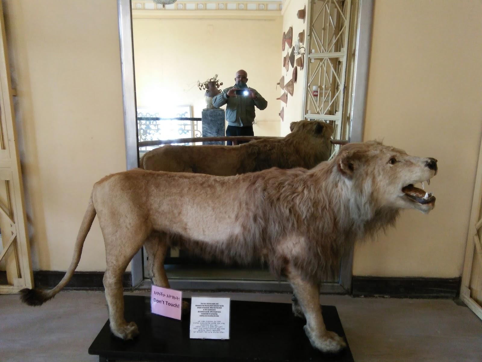 Solo African Travel Safari Through Ethiopia Uganda And Rwanda