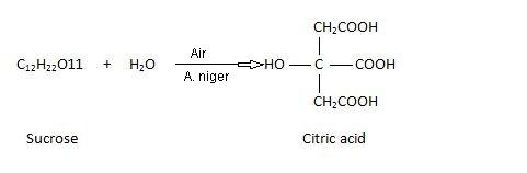 Citric Acid Preparation From Molasses.