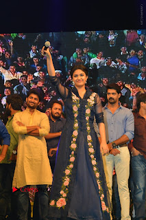 Nenu Local Audio Launch Stills  0023.JPG