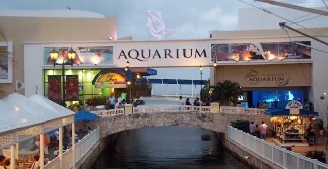 Como chegar no Interactive Aquarium em Cancún