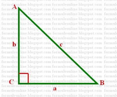 teorema lui Pitagora formuleonline.blogspot.com