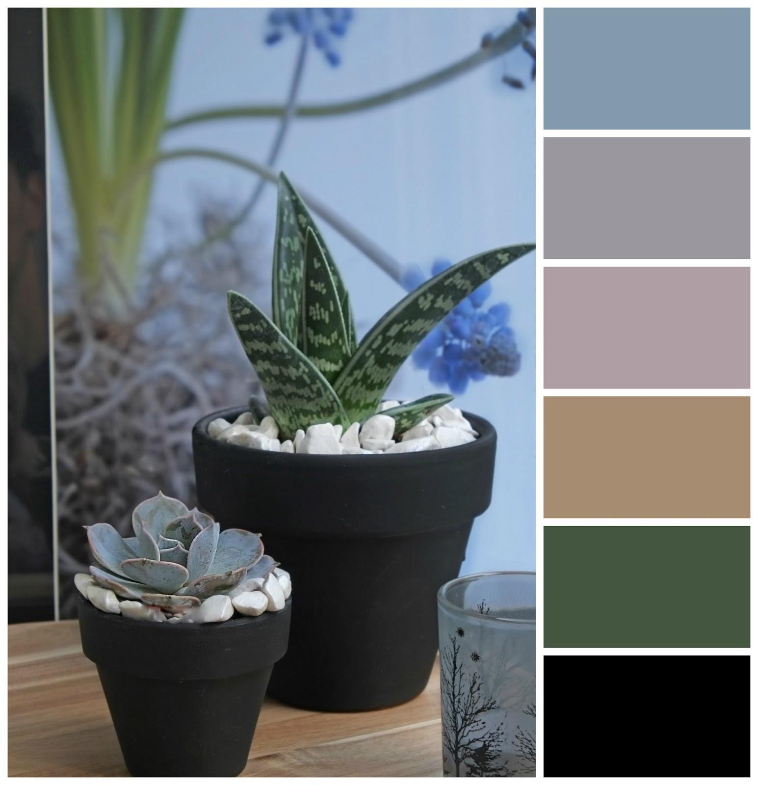 Kleurenpaletten, inspiratie met vetplant (interieur ideeën ...