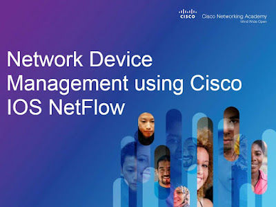Network Device Management using Cisco IOS NetFlow