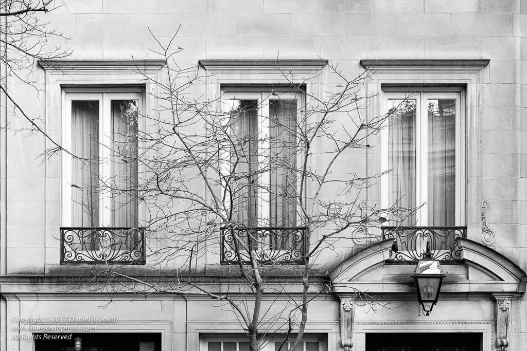 a photo in black and white of a manhattan brownstone townhouse with a bare tree