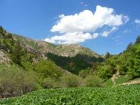 Все десять мостиков ущелья Оджук, 4 день похода, Варзоб, горы Таджикистана