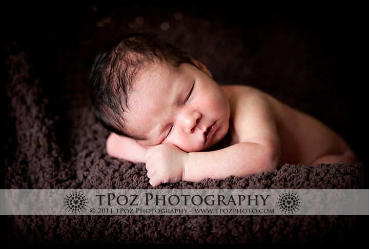 baltimore newborn baby portrait photography