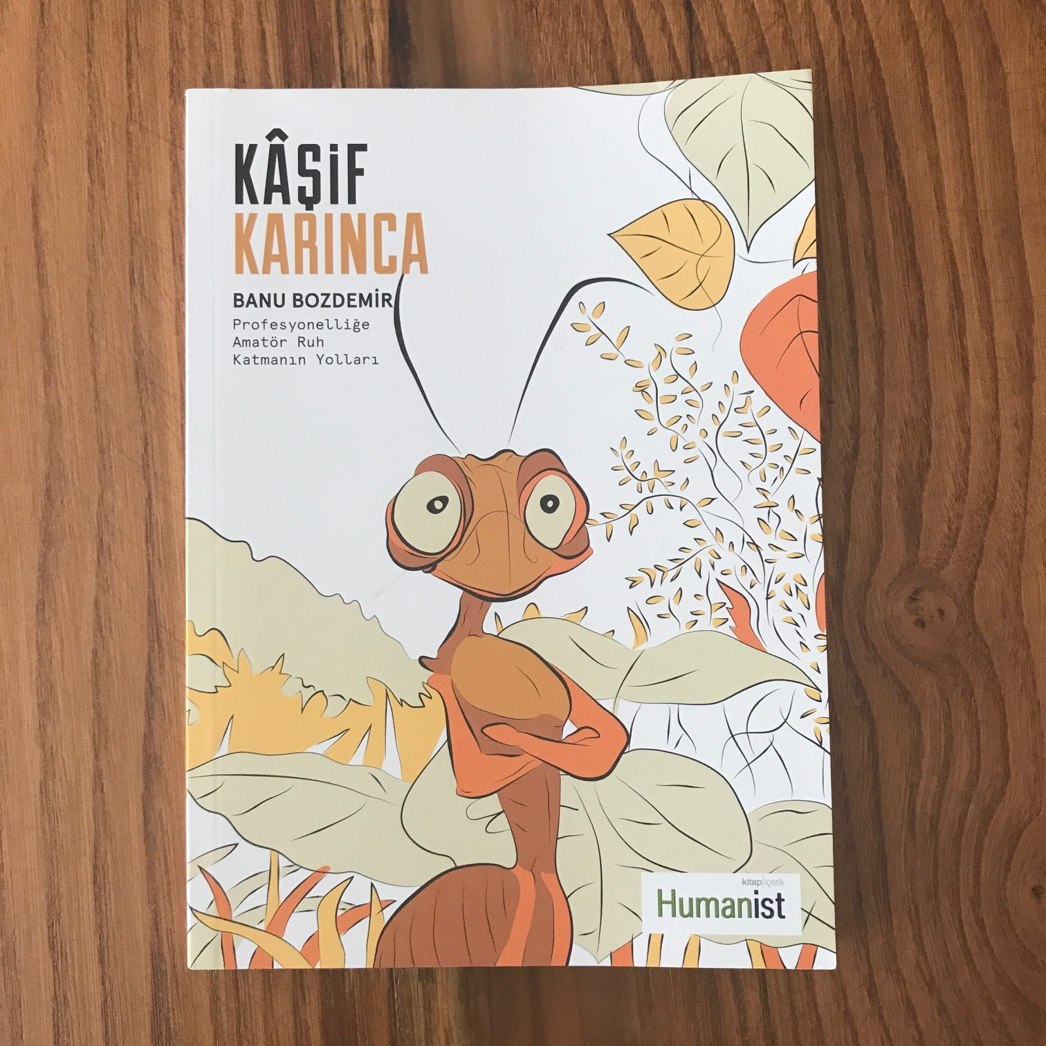 Kasif Karinca - Profesyonellige Amator Ruh Katmanin Yollari (Kitap)