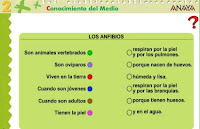 http://www.ceiploreto.es/sugerencias/A_1/Recursosdidacticos/SEGUNDO/datos/03_cmedio/03_Recursos/actividades/03/act8.htm