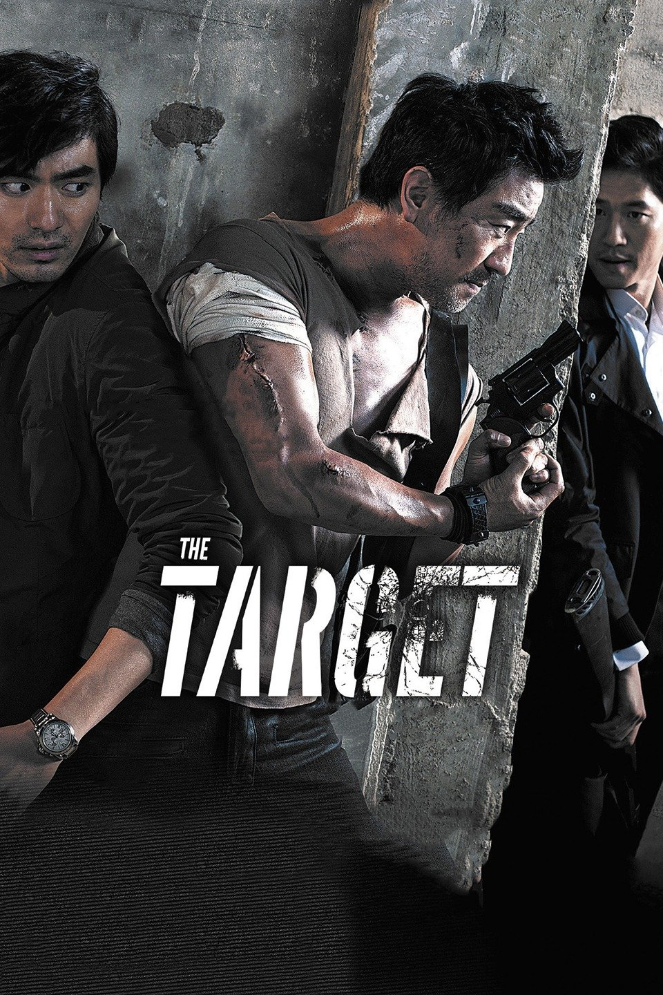 The Target 2014 Dual Audio Hindi 720p BluRay 950mb