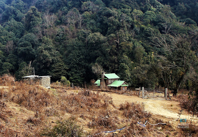 dzulake-photos-places-to-visit-nagaland-treking-picnic-spot-09