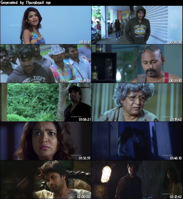 Aravind 2 2013 UNCUT Hindi Dubbed 480p HDRip 400mb