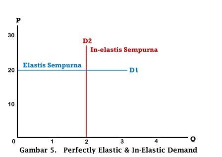 Perfectly Elastic & In-elastic Demand - www.ajarekonomi.com