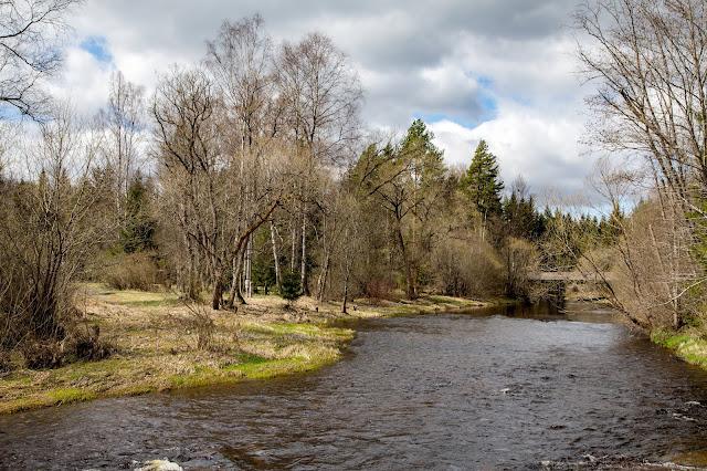 Rundweg im Säumermoor - Soumarské rašeliniště | Wandern im tschechischen Böhmerwald | Nationalpark Sumava | Soumarský Most | Wandern Šumava 08