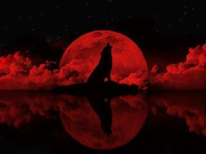 Resultado de imagem para lua de sangue julho