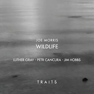 Joe Morris, Wildlife, Traits