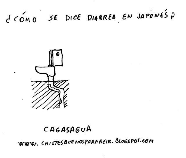 ¿Cómo se dice diarrea en japonés? Cagasagua