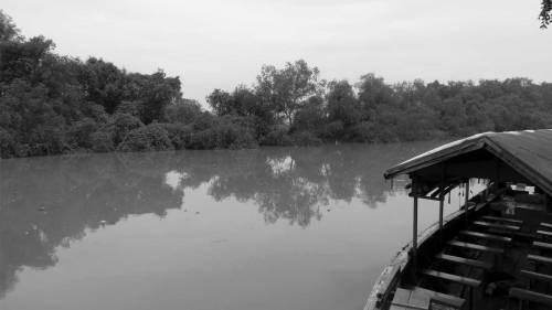 hutan mangrove wonorejo rungkut surabaya