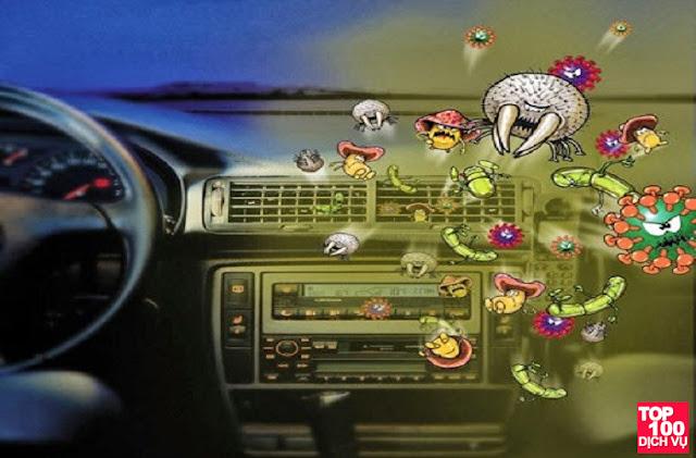 Tổng Hợp Các Cách Khử Mùi Hải Sản Trong Xe Ô Tô, Xe Hơi