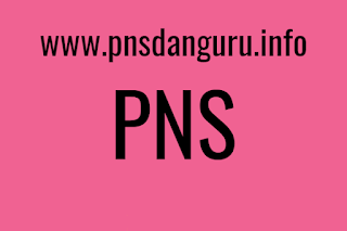 Salah satu pekerjaan favorit di Indonesia ialah PNS Keuntungan dan Kekurangan Seorang PNS