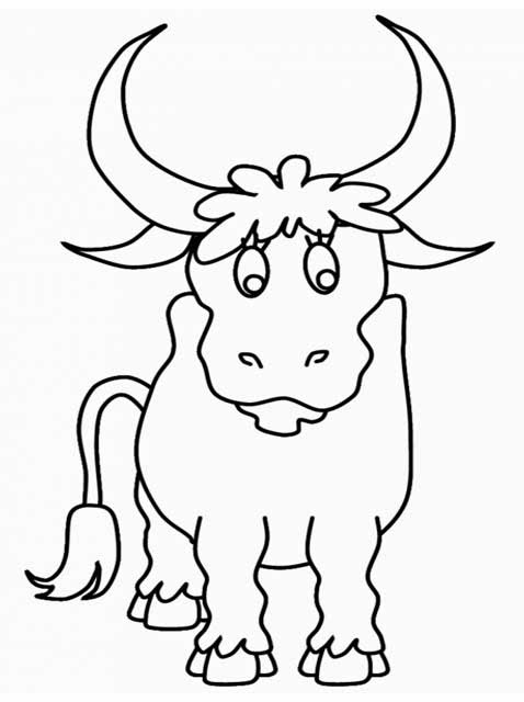 Kids Page Bull Coloring Page