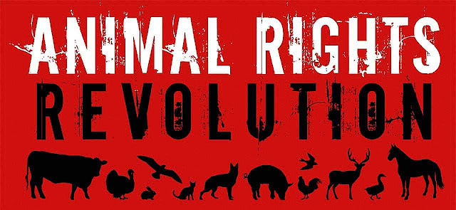 Por trás de uma fachada simpática de defesa dos animais de estimação se esconde uma revolução universal contra o homem e a civilização