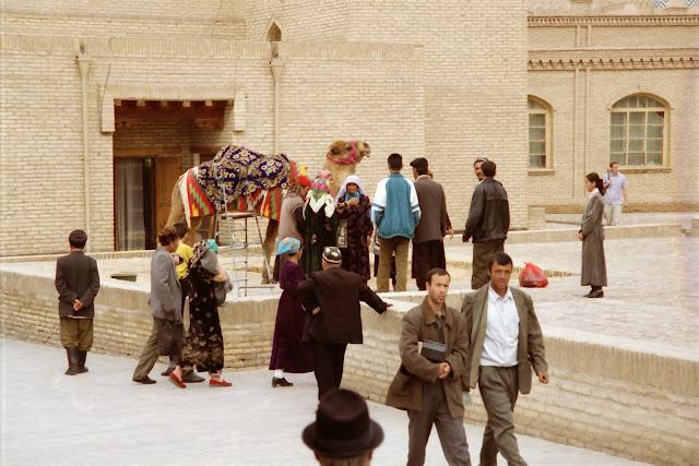 Ouzbékistan, Khiva, chameau, © L. Gigout, 2012