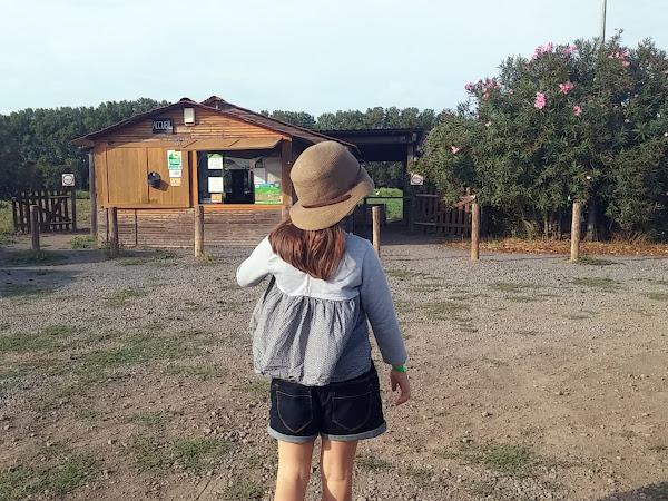 Sortie en famille - La cueillette de Caillan