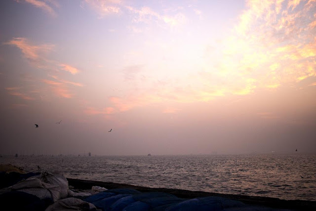 pink colourful sky morning dawn sassoon docks mumbai india clouds birds