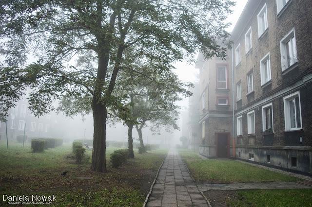 mgła wszędzie..