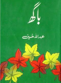 Baagh Novel Urdu By Abdullah Hussain