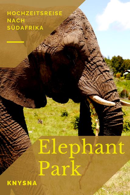 Nachhaltige Tieraufzucht in Südafrika