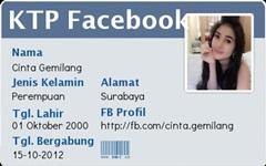 Cara Membuat KTP Facebook / ID Card Dumay